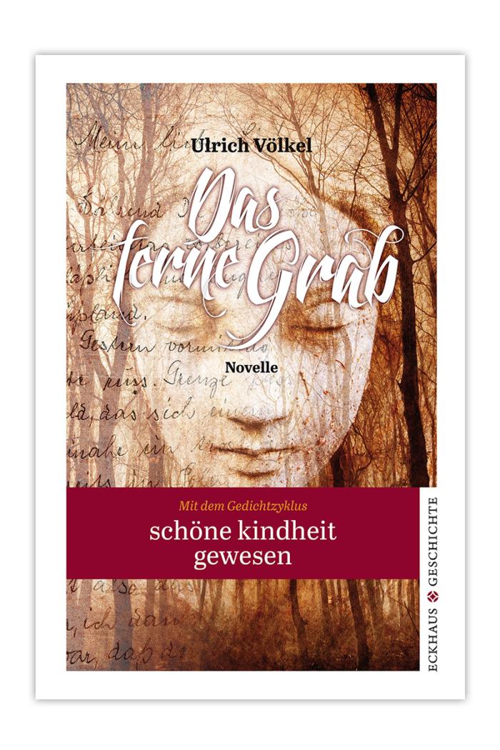 Buchcover Das ferne Grab